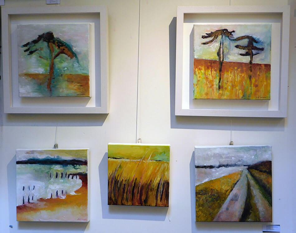 gallery Sinéad Ní Chionaola